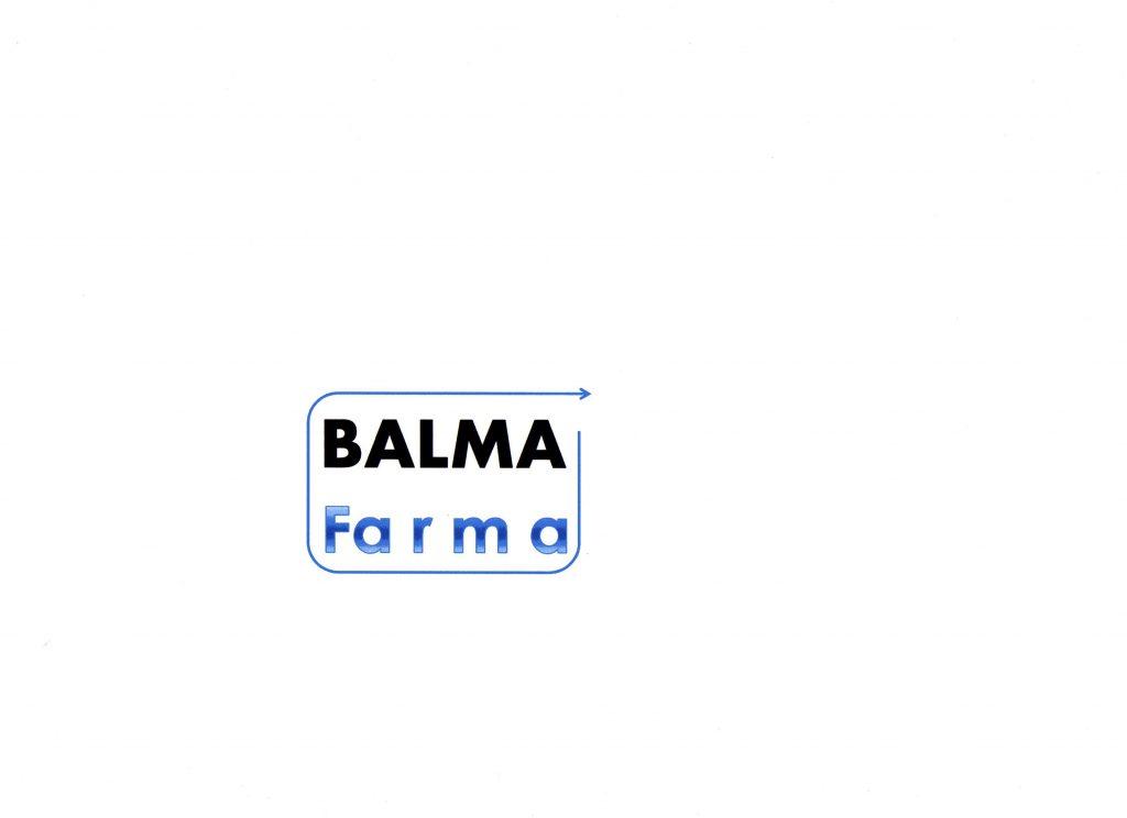 LOGO BALMA028.jpg