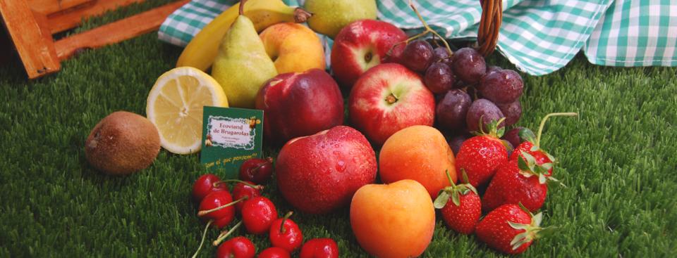 Fruta Ecológica Ecoviand